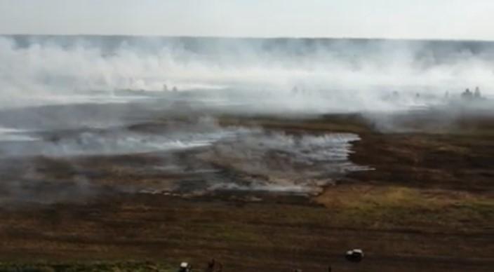 на рівненщині пожежа сухо трави охопила кілька сіл