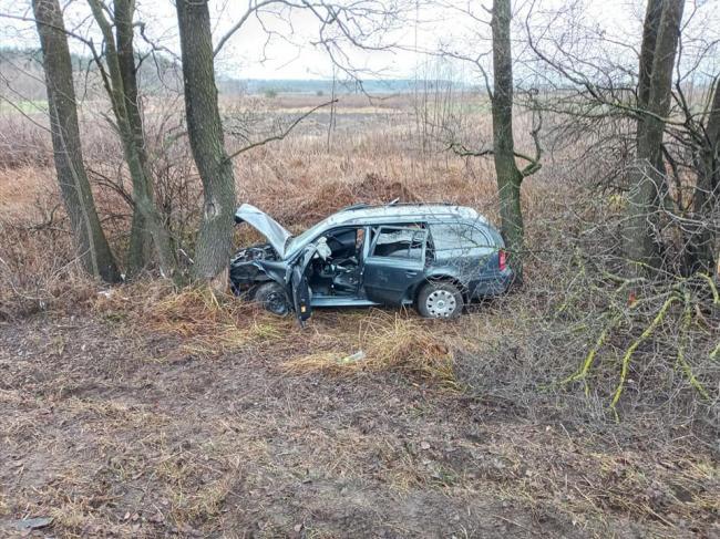 На Рівненщині авто, що злетіло у кювет, застрягло між деревами
